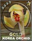Korea Orchid Award-Gold
